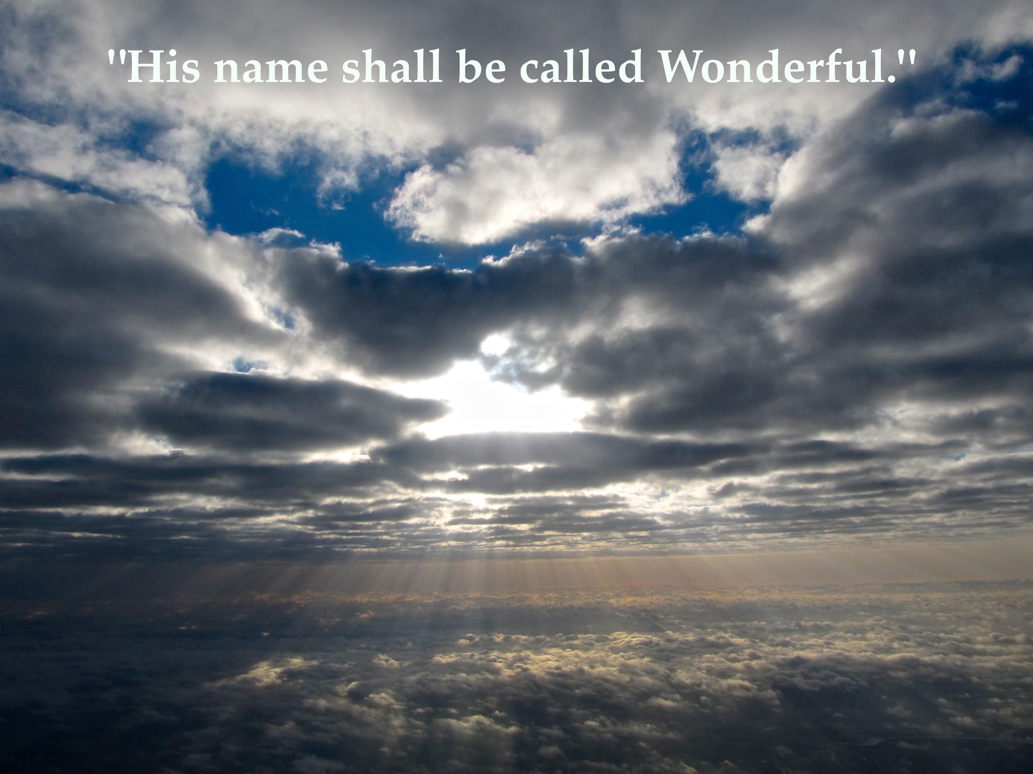 his name is wonderful pdf